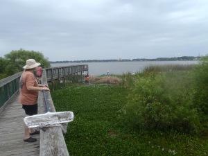 Lake Howard Nature Park Pier