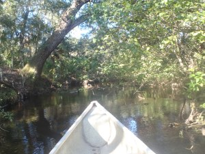 Tiger Creek was a jplace I was more in and out of the water than in my boat