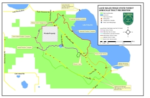 Arbuckle Tract,Lake Wales Ridge State Forest Hiking Trails