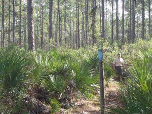 Dan Clark near a trail marker