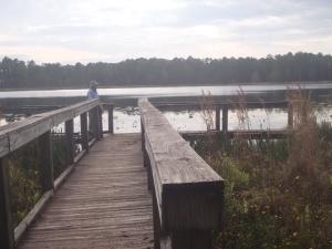 Lake Godwin