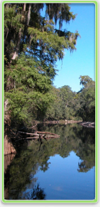 suwannee river pic